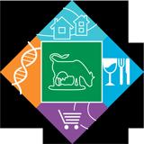 CYO Foundation Logo